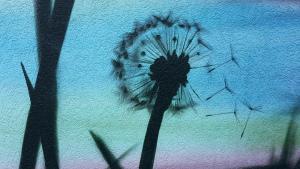 Foto: StreetArt Graffiti von einer Pusteblume