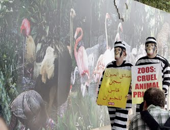 PAPYRUS: PETA protest at Dubai Zoo ends with whimper